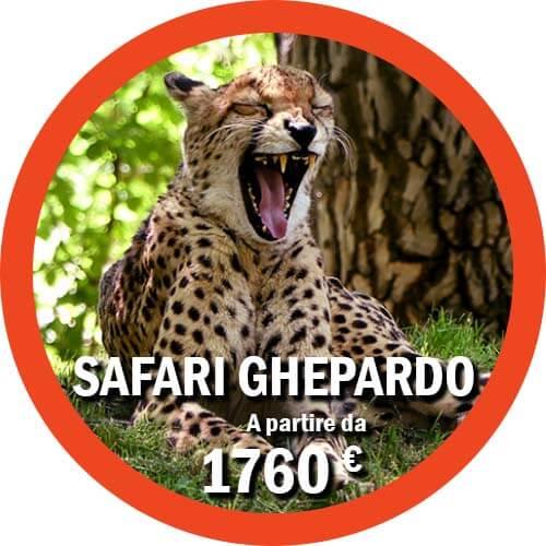 Ghepardo Safari di 7 giorni in Tanzania