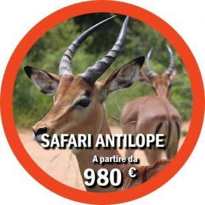 Antilope tour di 4 giorni in Tanzania