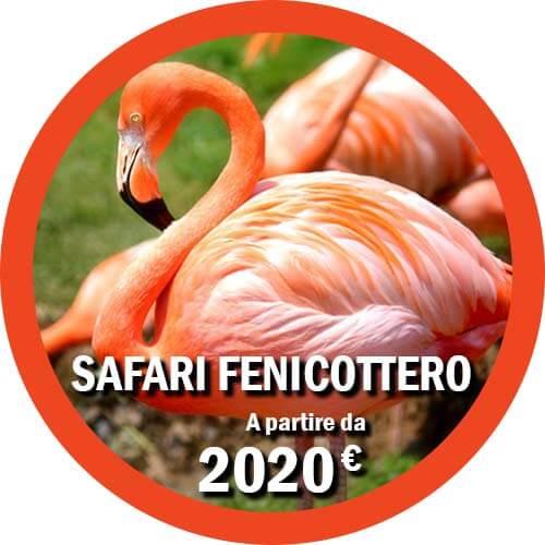 Fenicottero Tour safari di 8 giorni Tanzania