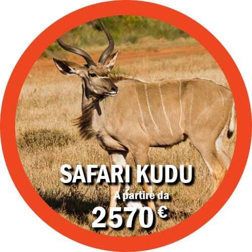 Kudu Tour safari di 11 giorni in Tanzania