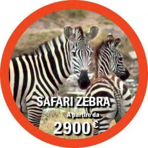 Pacchetto safari Tanzania e Mare a Zanzibar