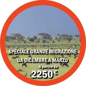Tour Grande Migrazione da Luglio a Settembre