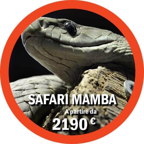 Tour di 9 giorni in Tanzania