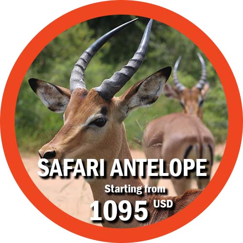 4 day safari tanzania