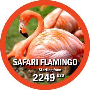 8 day tour safari tanzania