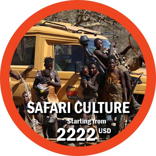 Safari Culture