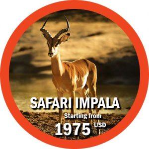 Safari Impala En