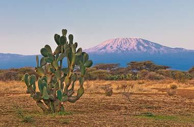 Vista del Monte Kilimanjaro