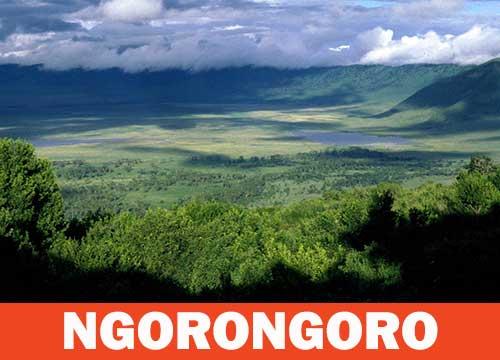 Aire de conservation du Ngorongoro