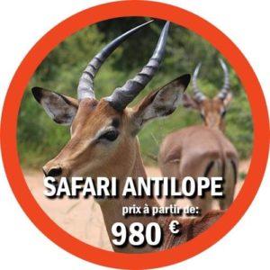 Antelope Safari de 4 jours en Tanzanie