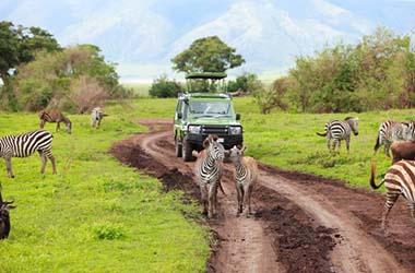 Da Serengeti a Ngorongoro