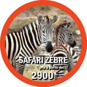 Forfait Tanzanie et safari en mer à Zanzibar