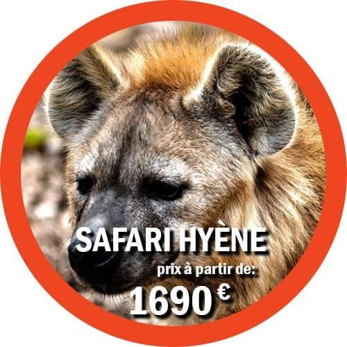 Hyène Voyage de 6 jours en Tanzanie