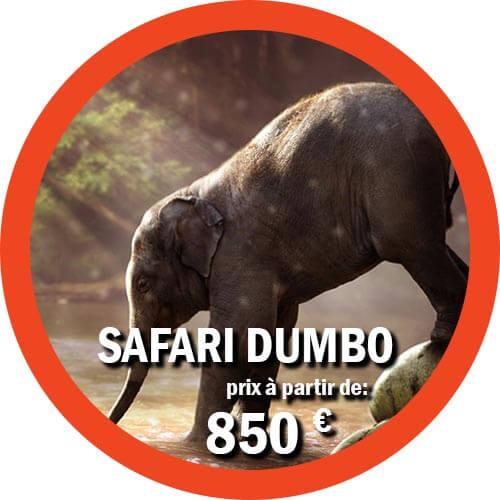 Itinéraire Dumbo