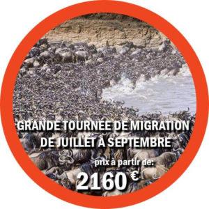 Itinéraire du Grand Safari de Migration de juillet à septembre