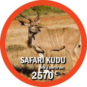 Kudu - Safari de 11 jours en Tanzanie