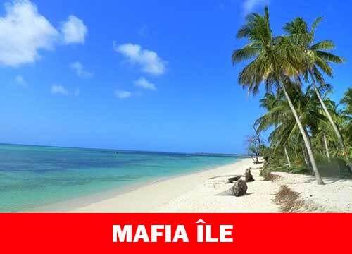 Mafia île