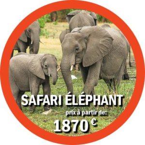 Offre de safari de groupe en Tanzanie