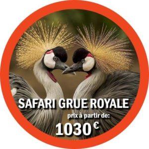 Safari de groupe en Tanzanie offert