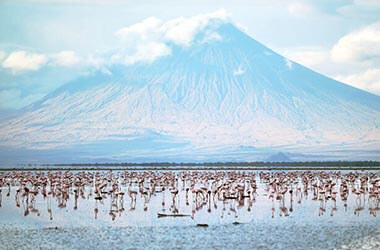 Visit Lake Natron