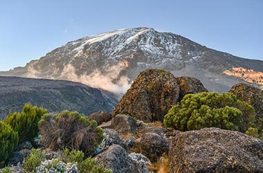 Visitez le parc du Kilimandjaro
