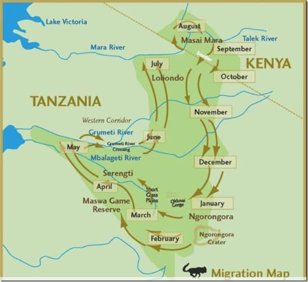 Mappa grande migrazione