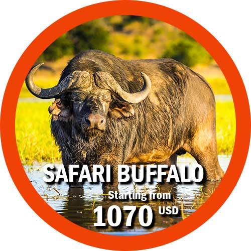 Safari Bufalo 5 day Tanzania