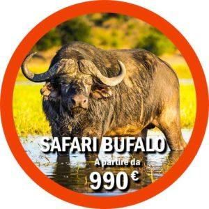 Safari Bufalo 5 giorni Tanzania