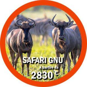 Safari Gnu Grande Migrazione