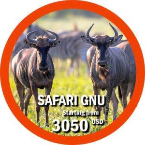 Safari Gnu Great Migration