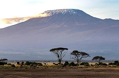 Trasferimento ad Arusha