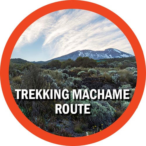 Trekking Machame Route