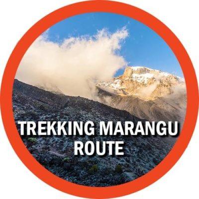 Trekking Marangu Gate