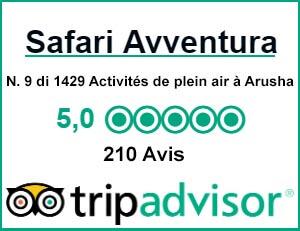 TripAdvisor Avis SafariAvventura