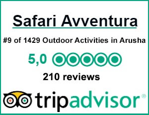 TripAdvisor Reviews SafariAvventura