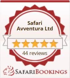 SafariBookings Widget reviews