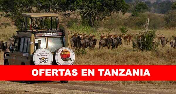 OFERTAS EN TANZANIA
