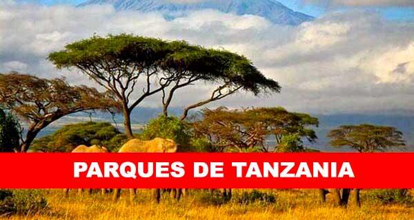 PARQUES DE TANZANIA
