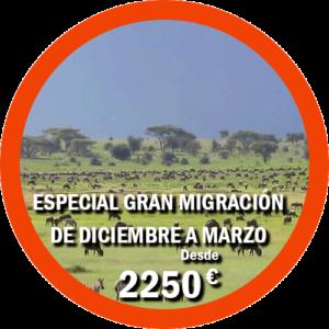 Especial Gran Migración de diciembre a marzo