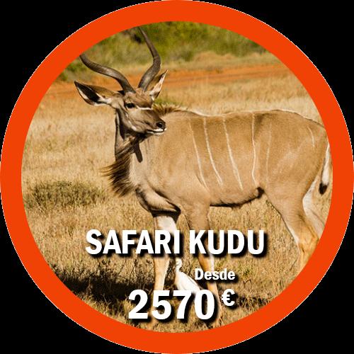 Safari Kudu