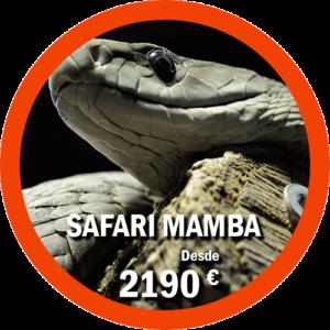 Safari Mamba