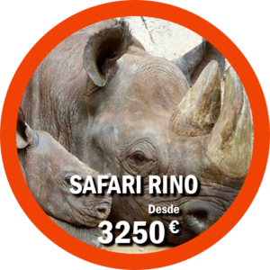 Safari Rino